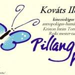 Visegrád – Pillangós-ház: EGÉSZség turizmus a Dunakanyarban